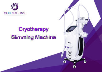 RF Fat Dissolving Cryolipolysis Machine 8.4 Inch Touch Screen Display CE Assured